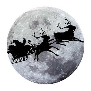 Men graphic tees Christmas Moon