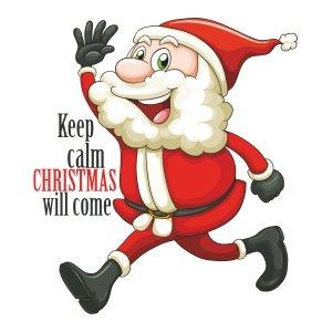 Short sleeve kids Christmas t shirts Santa will come